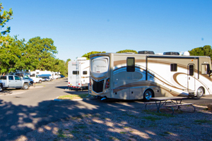Several RVs parked at Trailer Village RV Park